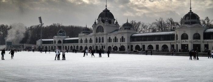Városligeti Műjégpálya is one of Budapest 2015.