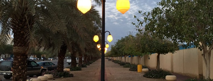 Al Rayyan Park is one of Good for walking.