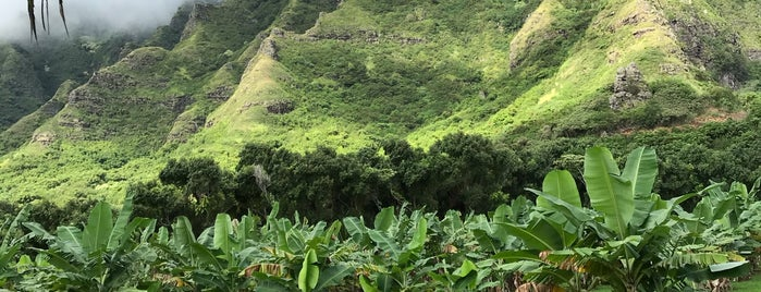Ka'a'awa Valley is one of Love.