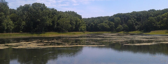 Lakewood Forest Preserve is one of Chicago Part II.