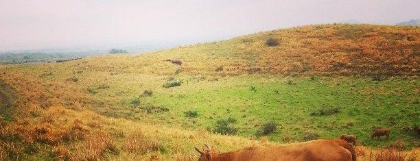 용눈이오름 is one of Jeju Island.