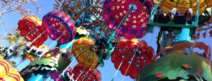 Jumpin' Jellyfish is one of Orte, die Shamika gefallen.
