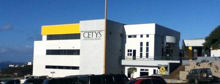 CETYS Universidad is one of Orte, die Roge gefallen.