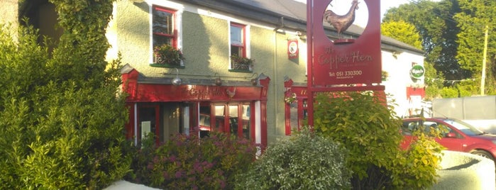 The Copper Hen is one of Michelin Bib Gourmands in Ireland.