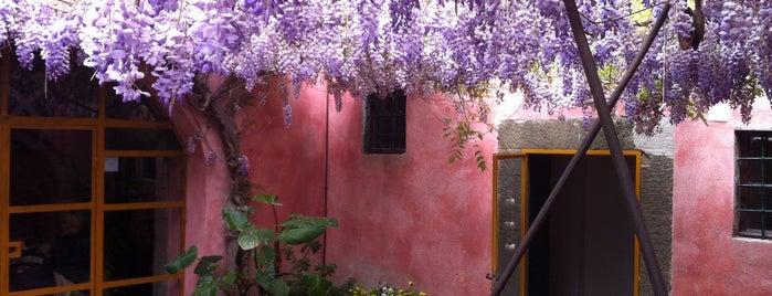 La Cantinetta di Sassolini is one of สถานที่ที่บันทึกไว้ของ Yusuf.
