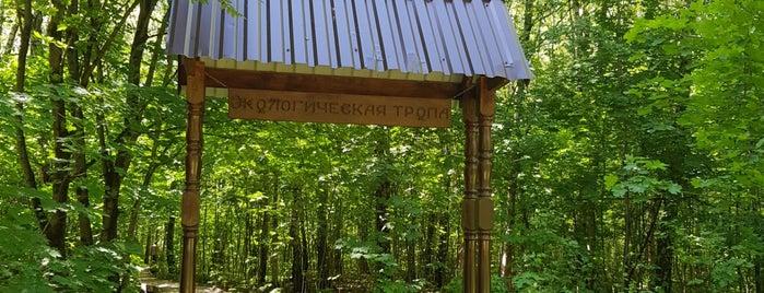 Познавательно-прогулочная экологическая тропа is one of Tempat yang Disukai Pavel.