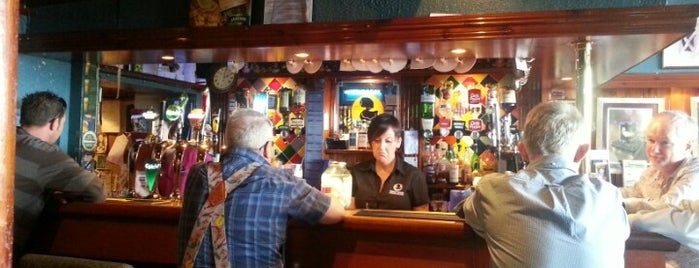 The Dirty Duck Alehouse is one of Belfast.