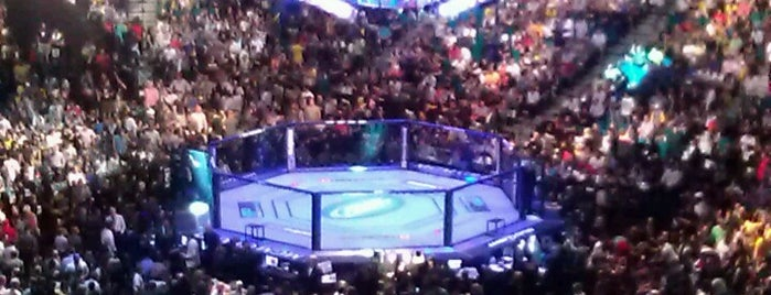 MGM Grand Garden Arena is one of Orte, die Andrew gefallen.