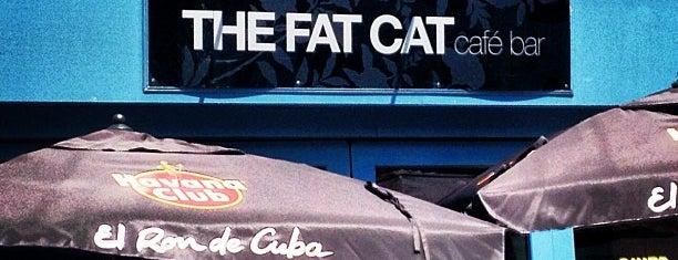 Fat Cat is one of สถานที่ที่ Robert ถูกใจ.