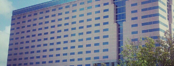 Hilton Atlanta Airport is one of Hotels.