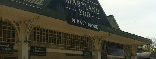 Maryland Zoo in Baltimore is one of Baltimore, MD.