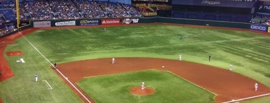 Tropicana Field is one of MLB Baseball Stadiums.