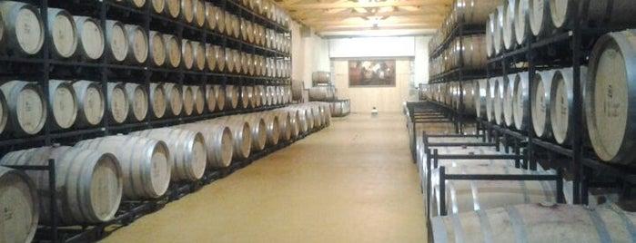 Bodega El Lagar De Isilla is one of สถานที่ที่ Miguel ถูกใจ.