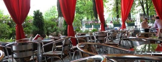 Alfredo Café is one of Cafe Kyiv (Kiev, Ukraine).