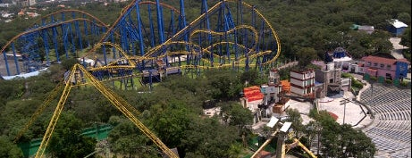 Six Flags México is one of #KIDS911 de ALADINO®.