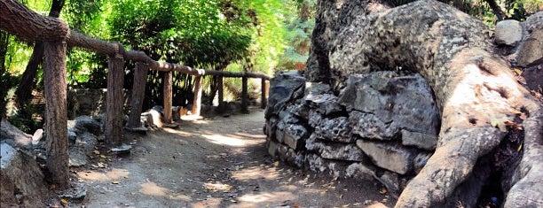 Ferndell Trail is one of Hiking - LA - South Bay - OC - etc..