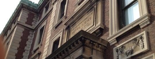 Schermerhorn Hall - Columbia University is one of Locais curtidos por Geraldine  🤡😻😆💋👋.