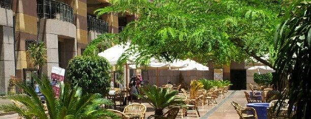 The American University in Cairo (AUC) is one of Posti salvati di Suzi.