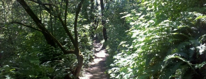 Tennessee Valley Trail is one of Outdoor Adventures.
