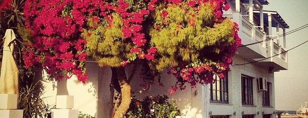 Municipality Of Spetses is one of Spetses Island.