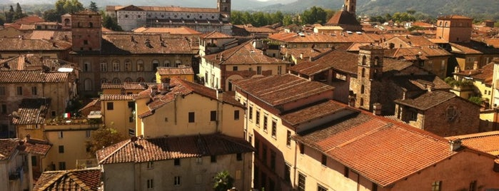 Torre Guinigi is one of Lucca Bars, Cafes, Food, POI.