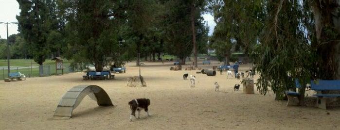 Recreation Park Dog Park is one of LB Favorite Places.