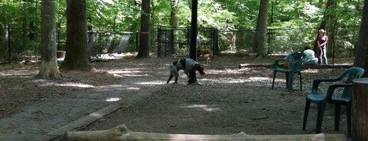 Brook Run Dog Park is one of Tempat yang Disimpan Todd.