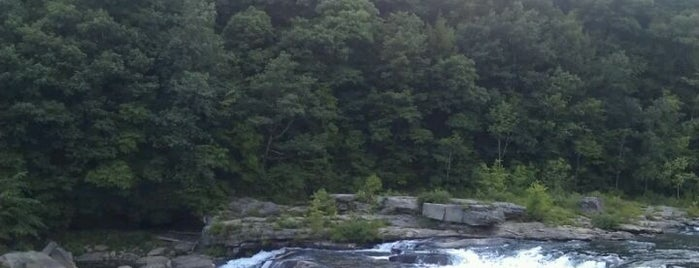 Ohiopyle Falls is one of Jingyuan 님이 좋아한 장소.