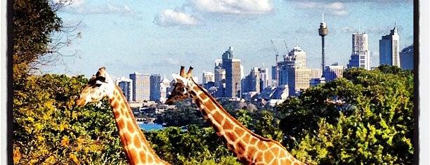 Taronga Zoo is one of Sydney, NSW.