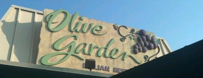 Olive Garden is one of R : понравившиеся места.