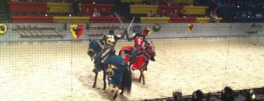 Medieval Times Dinner & Tournament is one of DC Restaurants.