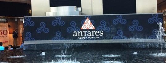 Antares is one of alışverişte top 10.