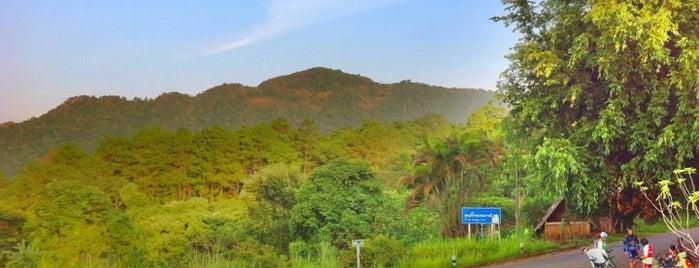 สวนรุกขชาติแม่ฟ้าหลวง ดอยช้างมูบ is one of Chiang rai jaoo.