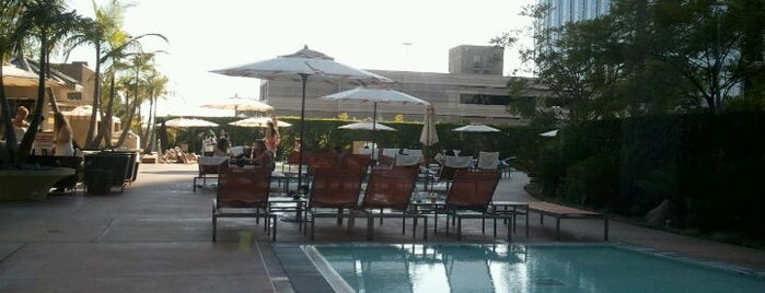 The Pool @ Hyatt Regency Century Plaza is one of LA and beach cities as a local.