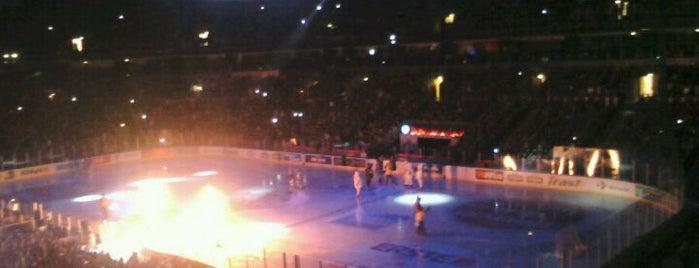 Arena Ice Fever 2012 is one of Pronađite Medvjede u Zagrebu.