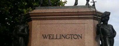 Wellington Monument is one of Lugares favoritos de Gio.