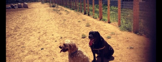 Kennedy Dog Park is one of Posti che sono piaciuti a Xuela.