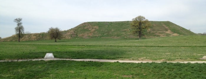 Cahokia Mounds State Historic Site is one of 101 Places to Take Your Family in the U.S..