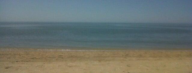 Playa Isla Canela is one of Posti che sono piaciuti a Davide.