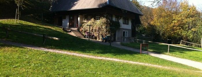 Schwarzwälder Freilichtmuseum Vogtsbauernhof is one of Германия.