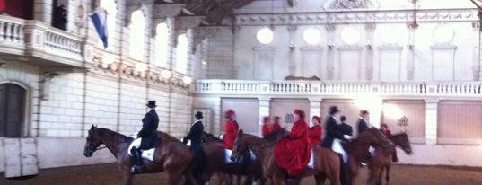 Levend Paardenmuseum - De Hollandsche Manege is one of David: сохраненные места.