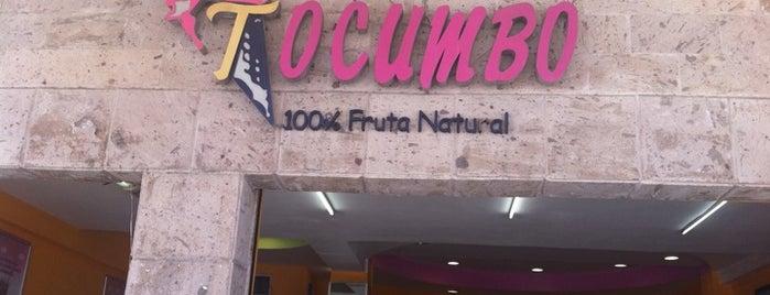 Tocumbo is one of Cafés, Mty Mx.