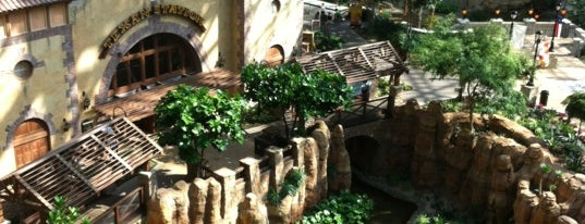 Gaylord Texan Resort & Convention Center is one of Gespeicherte Orte von Super.