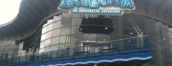 Downtown Aquarium is one of Denver.