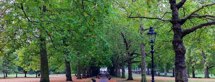 Green Park is one of Places to Visit in London.