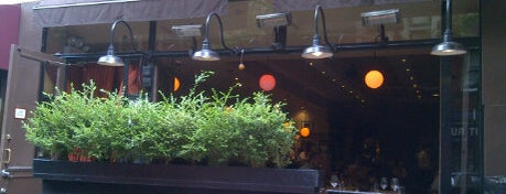 Lupa is one of NYC - Manhattan - Restaurants.