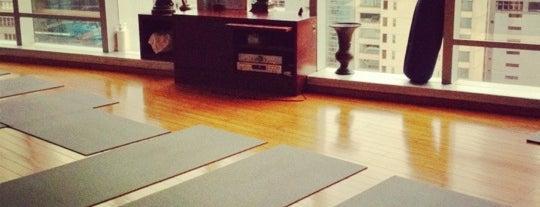 Pure Yoga is one of Jing 님이 좋아한 장소.