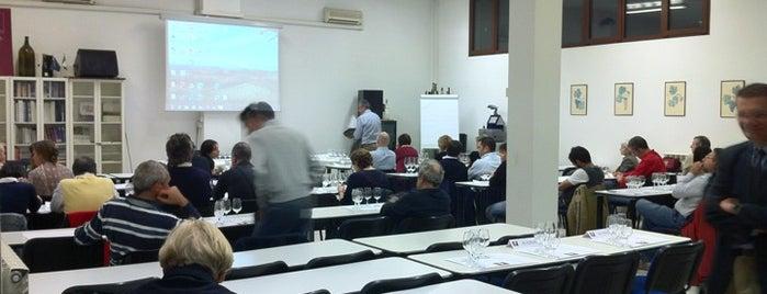 ONAV - Associazione Vino is one of Posti salvati di Lord.