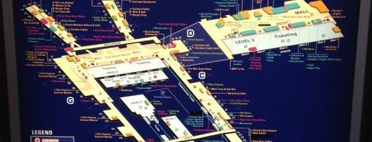 Aeroporto Internazionale di Minneapolis-Saint Paul (MSP) is one of 人擠人的地方.