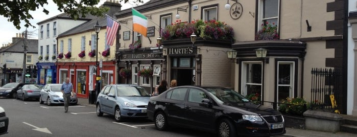 Harte's Bar & Grill is one of Ireland.